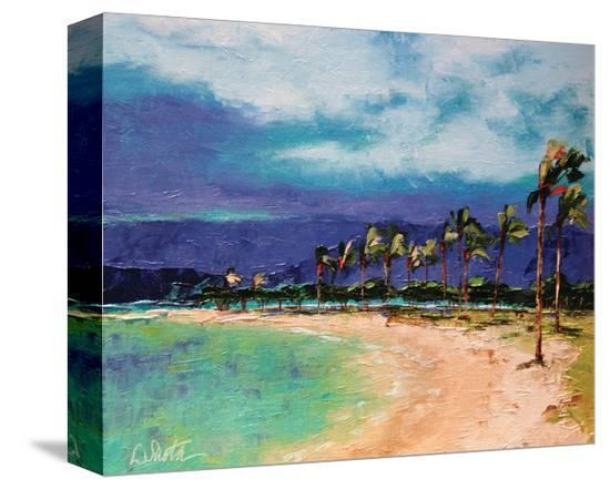 windy-hawaiin-shore