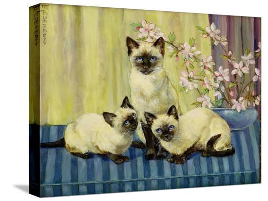winifred-humphery-three-siamese-cats