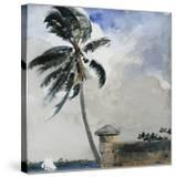 A Tropical Breeze  Nassau  1889-90