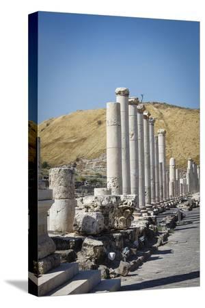yadid-levy-ruins-of-the-roman-byzantine-city-of-scythopolis