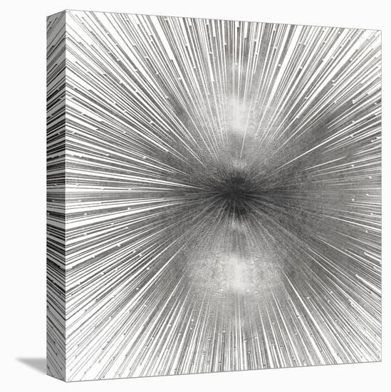 Radiant Silver-Abby Young-Stretched Canvas Print