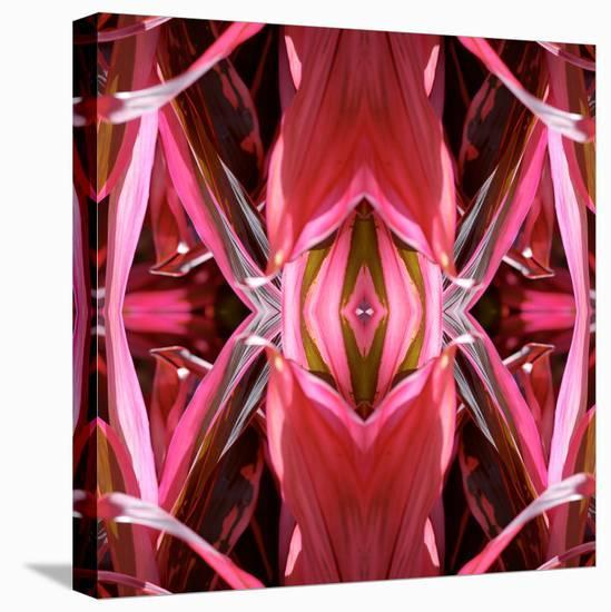 Red Blanket X3-Rose Anne Colavito-Stretched Canvas Print