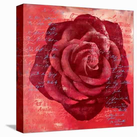 Red Rose-Anna Flores-Stretched Canvas Print