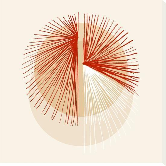 Red Sunburst--Stretched Canvas Print