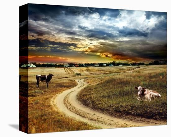 Road Field Stormy & Clouds--Stretched Canvas Print