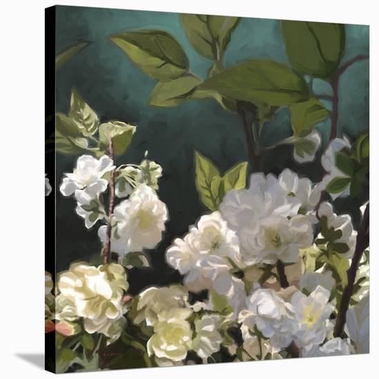 Roses 01-Rick Novak-Stretched Canvas Print