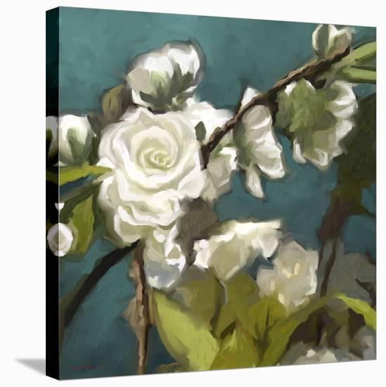 Roses 09-Rick Novak-Stretched Canvas Print