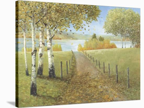 Rural Route I-Arnie Fisk-Stretched Canvas Print