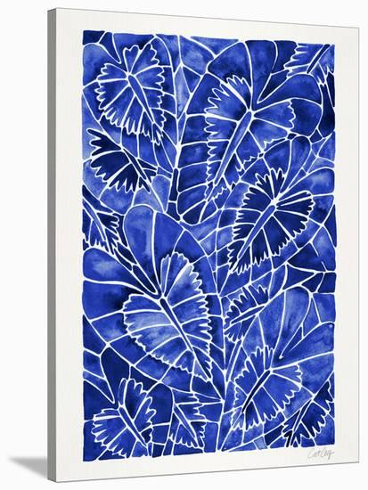 Schismatoglottis Calyptrata Navy-Cat Coquillette-Stretched Canvas Print