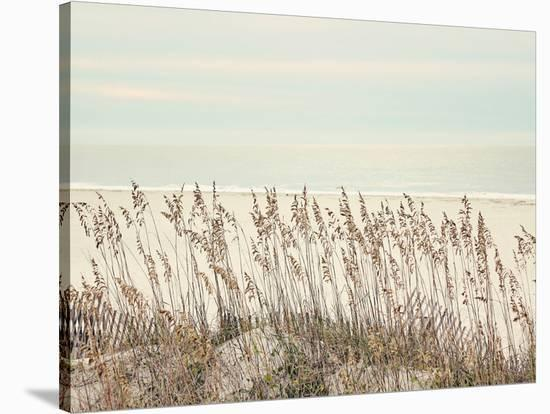 Sea Oats--Stretched Canvas Print