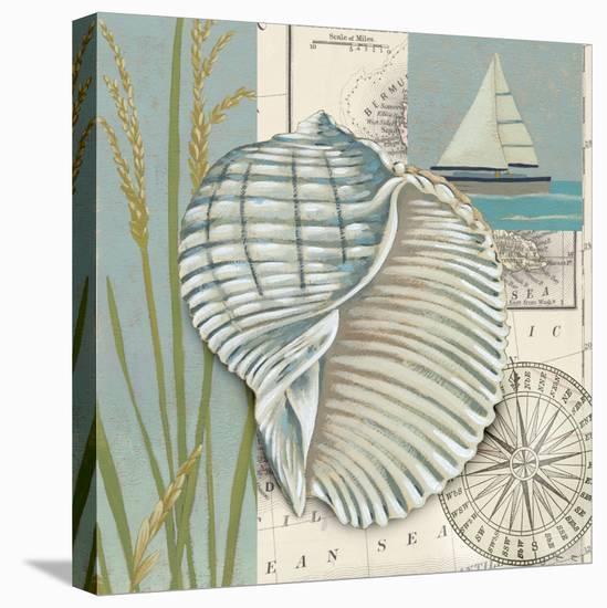 Seaside Shell I-Chariklia Zarris-Stretched Canvas Print