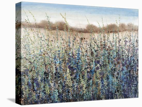 Seasons End-Tim O'toole-Stretched Canvas Print