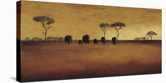 Serengeti II-Tandi Venter-Stretched Canvas Print