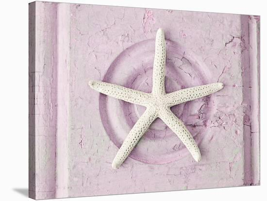 Shabby Sea Star--Stretched Canvas Print