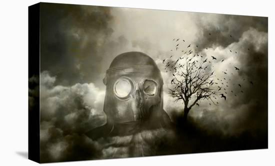 Shadows Fall-Blake Votaw-Stretched Canvas Print