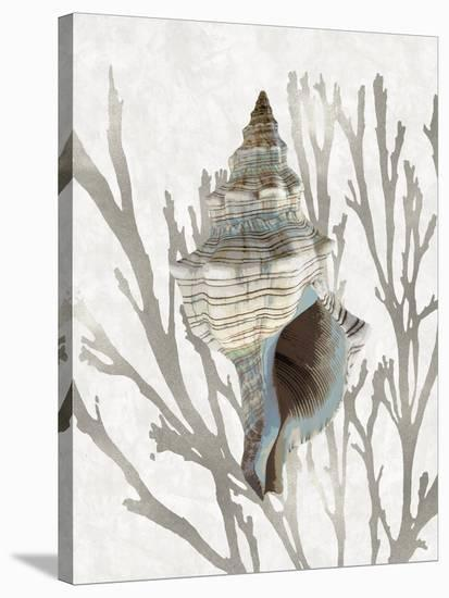 Shell Coral Silver III-Caroline Kelly-Stretched Canvas Print