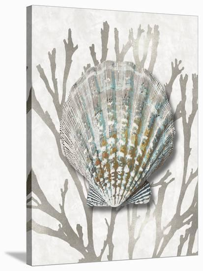 Shell Coral Silver IV-Caroline Kelly-Stretched Canvas Print