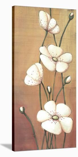 Shimmer II-Ella Codo-Stretched Canvas Print