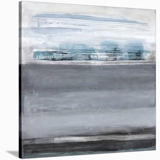 Snowy Tracks-Drew Sims-Stretched Canvas Print