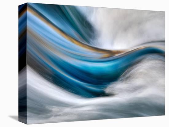 So Gentle, So Furious-Ursula Abresch-Stretched Canvas Print