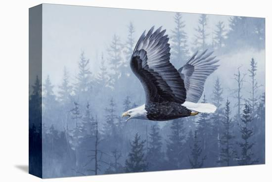 Spirit of the Forest-Telander-Stretched Canvas