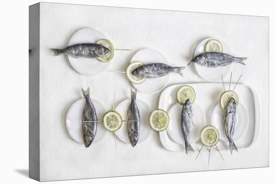 Still Life With Fish-Dimitar Lazarov-Stretched Canvas Print