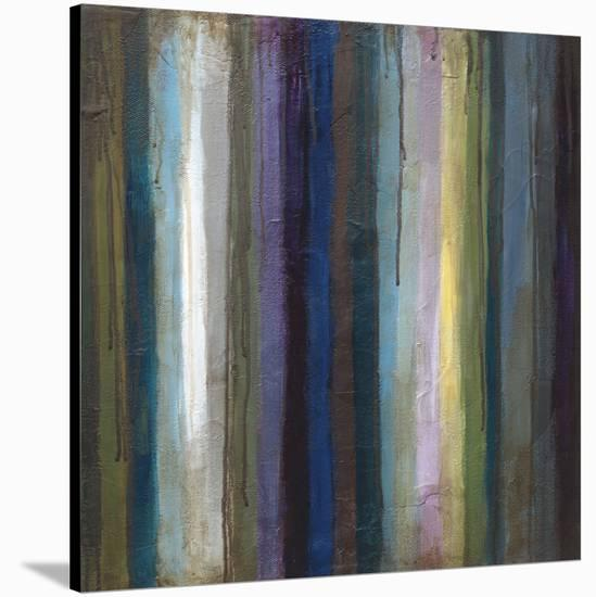 Striations II-Wani Pasion-Stretched Canvas Print