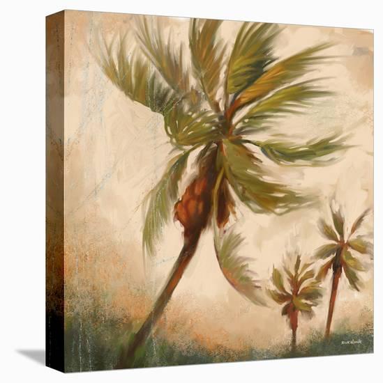 Strictly Palms 06-Rick Novak-Stretched Canvas Print