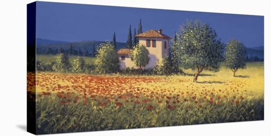 Summer Fields I-David Short-Stretched Canvas Print