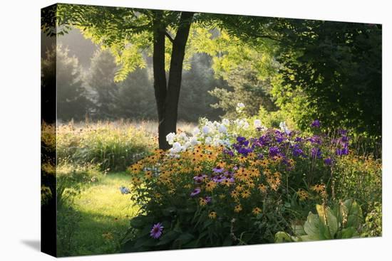 Summer Flower Adourn a Farm Garden-Kenneth Ginn-Stretched Canvas Print
