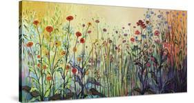 Summer Joy-Jennifer Lommers-Stretched Canvas