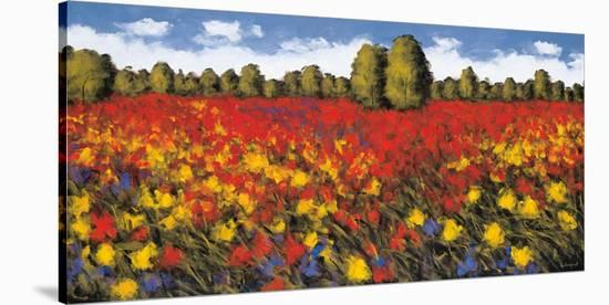 Summer Splendor-Wayne Leidenfrost-Stretched Canvas Print