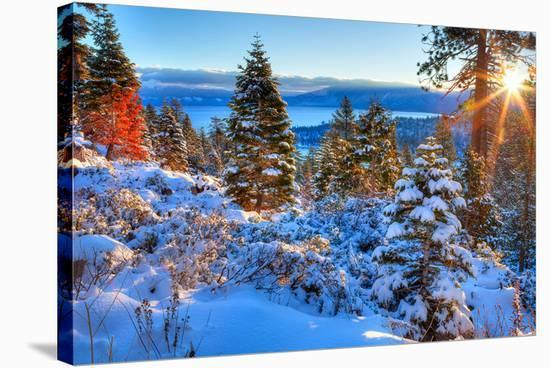 Sunrises Over Lake Tahoe CA--Stretched Canvas Print