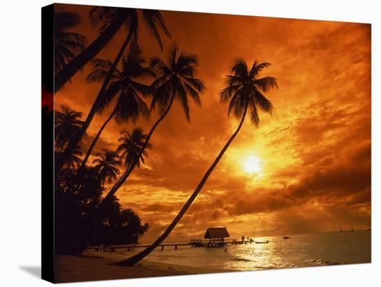 Sunset at Pigeon Point, Tobago, Caribbean-Terry Why-Stretched Canvas Print