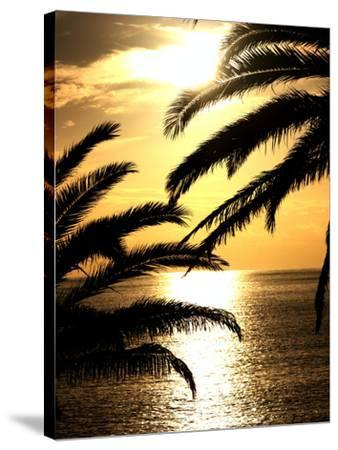 Sunset With Palm Leafs Travel-Wonderful Dream-Stretched Canvas Print