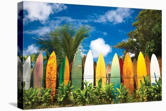 Surfer's Paradise - Hawaii--Stretched Canvas Print