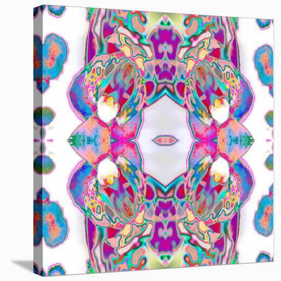 Sweet Orchid-Rose Anne Colavito-Stretched Canvas Print