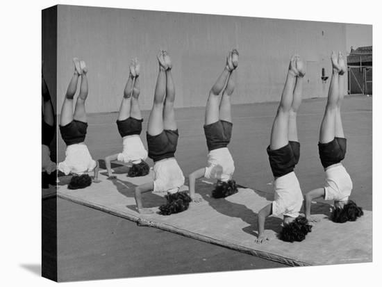 Teenage Girls from Hoover High School Standing on Their Heads in Gymnastics Class-Martha Holmes-Stretched Canvas Print
