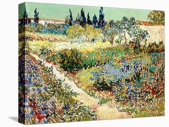 The Garden at Arles, 1888-Vincent van Gogh-Stretched Canvas Print