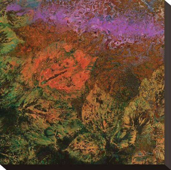 The Glades B-Jay Zinn-Stretched Canvas Print