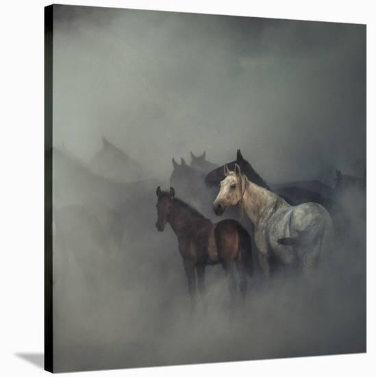 The Lost Horses-Huseyin Ta?k?n-Stretched Canvas Print