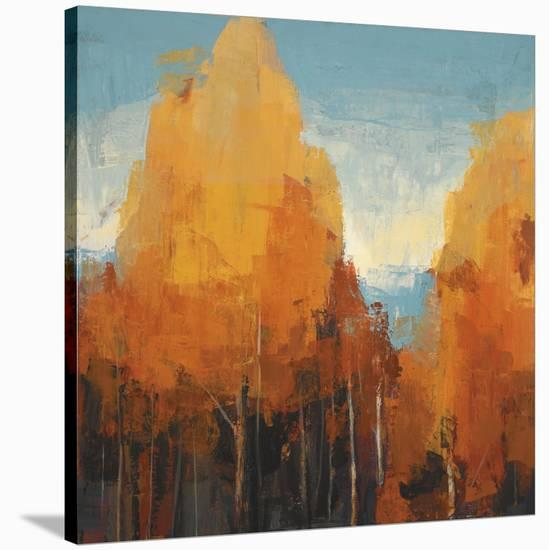 The Maples I-Peter Colbert-Stretched Canvas Print