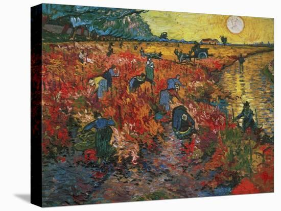 The Red Vineyard at Arles, c.1888-Vincent van Gogh-Stretched Canvas Print