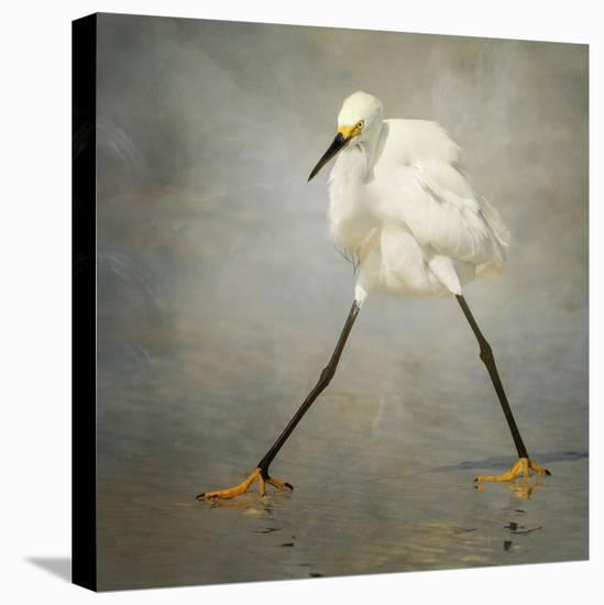 The Rock Star-Alfred Forns-Stretched Canvas Print