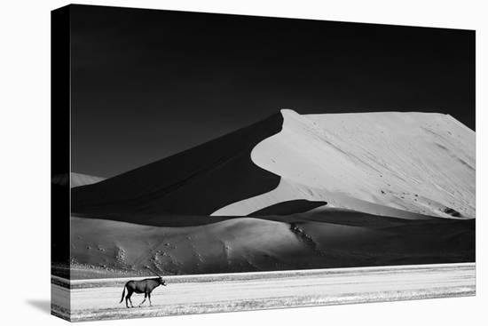 The Solitary-Mathilde Guillemot-Stretched Canvas Print