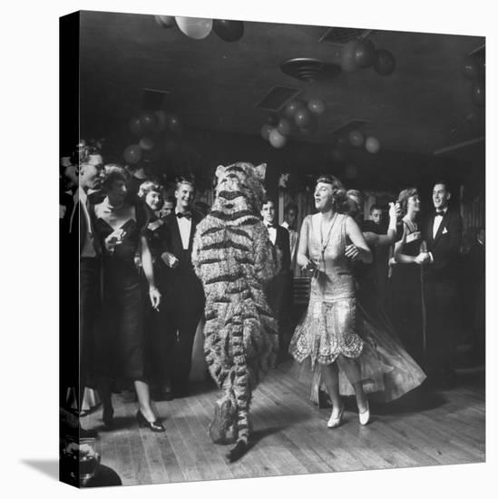 The Tiger Getting Expert Instructions from the Lady, During Charleston Party-Martha Holmes-Stretched Canvas Print