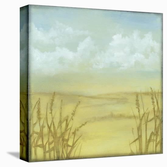 Through the Wheatgrass II-Jennifer Goldberger-Stretched Canvas Print