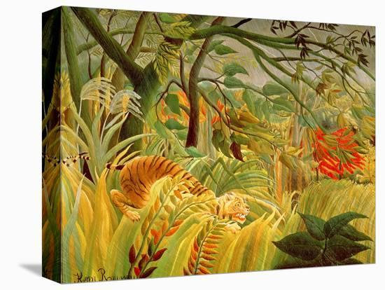 Tiger in a Tropical Storm (Surprised!) 1891-Henri Rousseau-Stretched Canvas Print