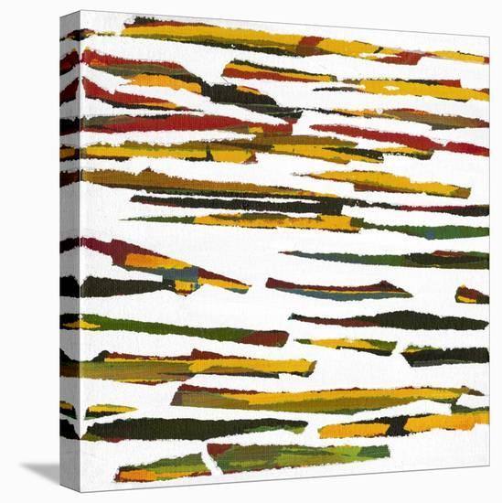 Torn III-Jodi Fuchs-Stretched Canvas Print