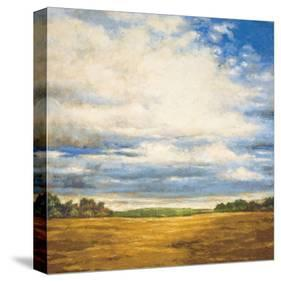 Tranquil Meadow-Zenon Burdy-Stretched Canvas